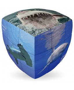 V-Cube SHARKS - 2 x 2 Pillow Cube